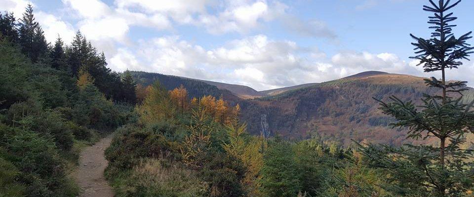 Djouce from Deerpark Woods, Wicklow – 14km