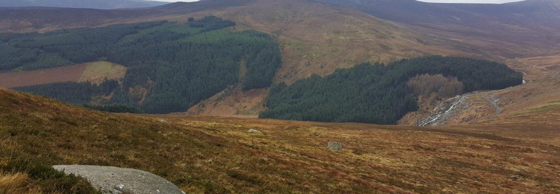 Glendalough, Camaderry, Tonelagee, Scarr Loop – 30km, 1300m gain