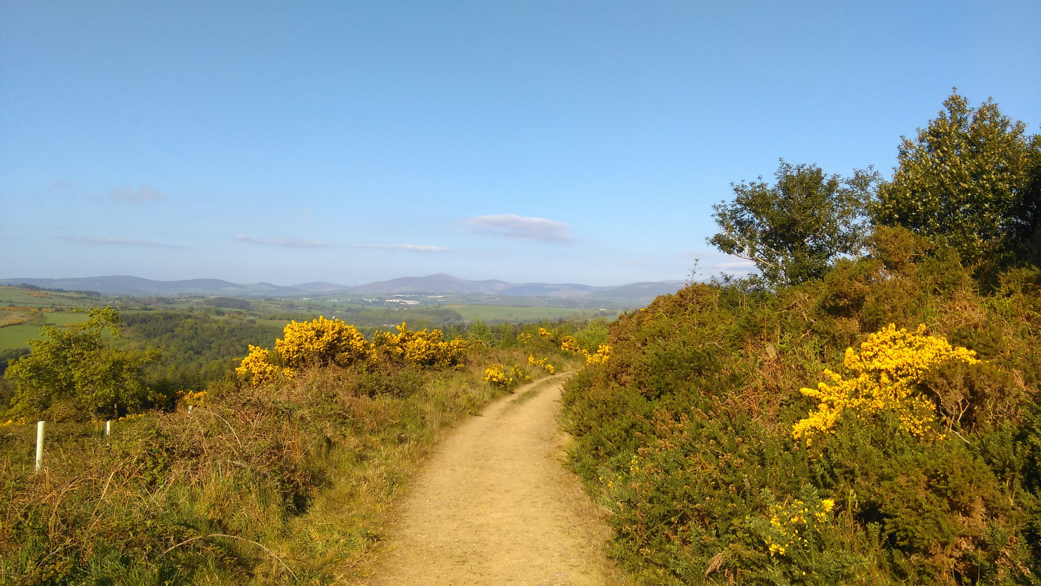 Wicklow Mountains View